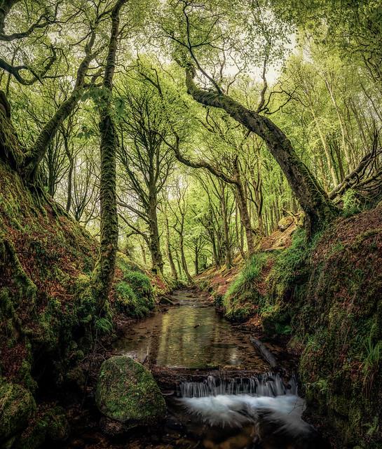 Trevaylor stream