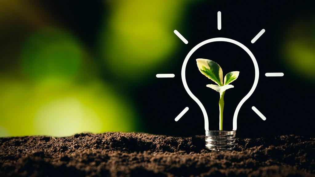 灯泡在土壤上,植物在里面生长