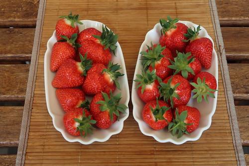 Erste Erdbeeren des Jahres (auf unserem Balkon genossen)