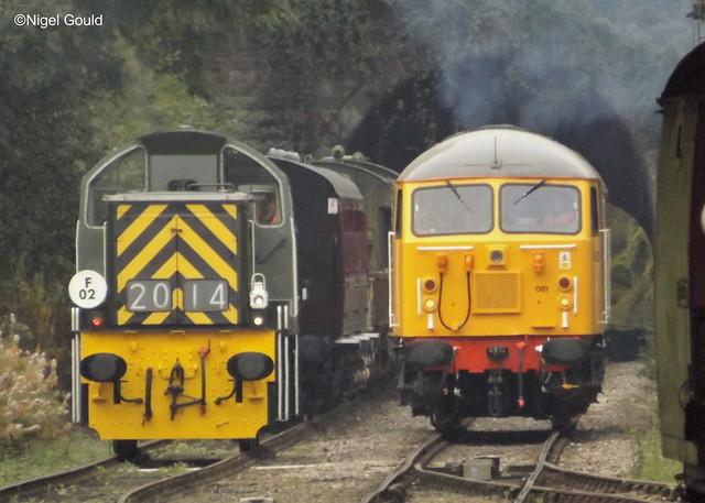 56081 + D9520