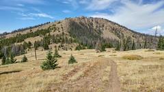 Windy Peak, Segment 16, Colorado Trail, CO