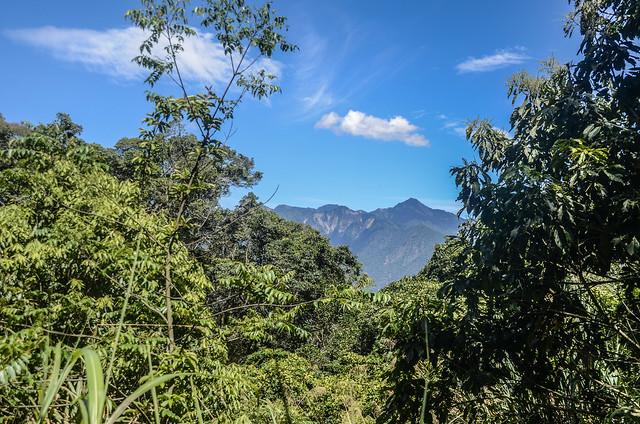 南我丹稜線巨木展望點東望小關山 (2)