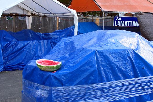 Watermelon Feast