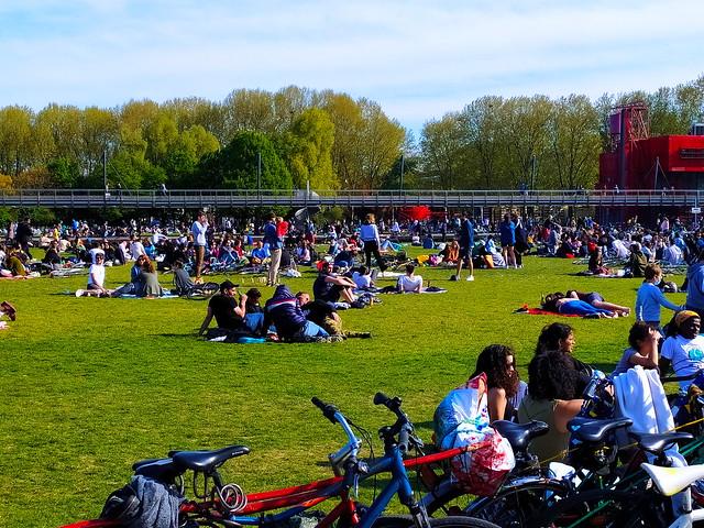 237 - Paris en Avril 2021 - une pelouse dans le Parc de La Villette
