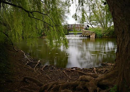 Oxford: River Cherwell; Mesopatamia