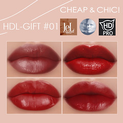 Cheap & Chic! HDL - Group Gift #01