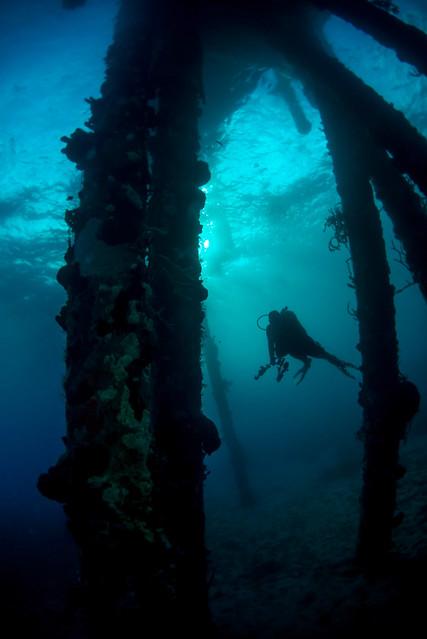 Diver in Dominica