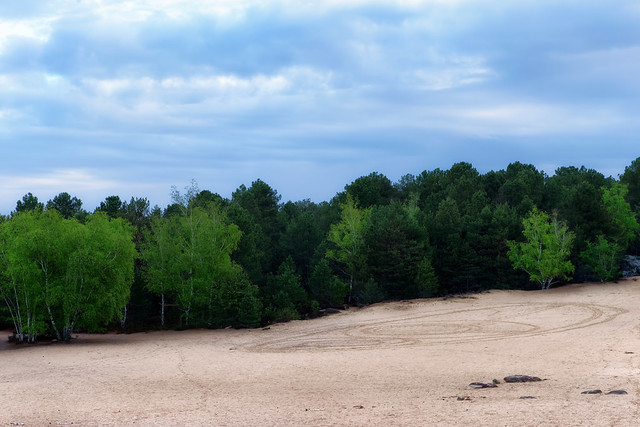 Sand of Fontainebleau