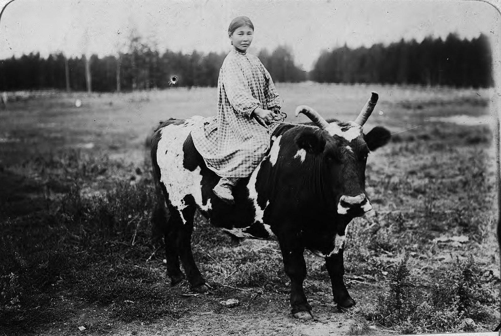 Девочка верхом на быке