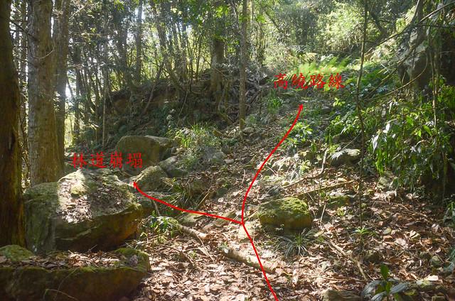 林道坍方上切點