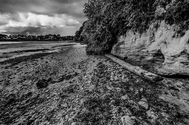 _DSC4420 - En attendant la marée