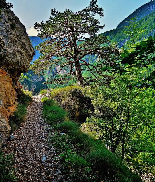 ITALIEN, Italy,   Richtung Brenta-Gebirge (-Dolomiten) zum Croz dell' Altissimo, 79071/13684