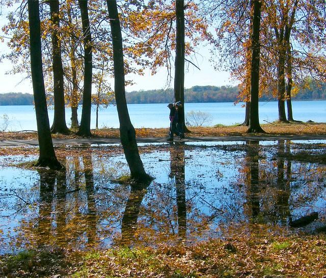 Wet Park