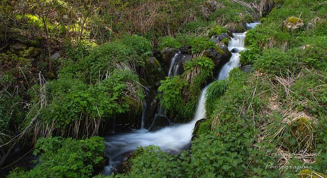Cascade d'Apcher (63)