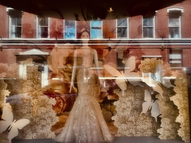 Bridal Party & Reflection - NYC