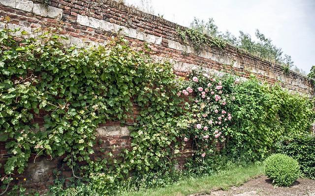 2018 05 28_1175 . Les jardins de la Chartreuse du Val Saint-Esprit.