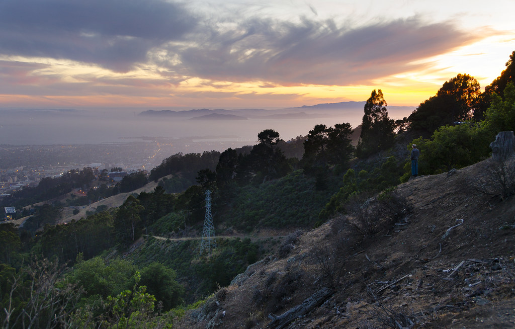 Watching from Grizzly Peak