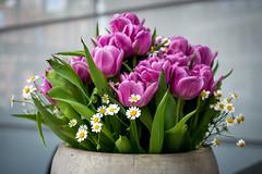 2016-04-22 Blumenstrauß