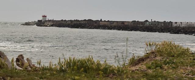 grande digue de Tarnos (5)
