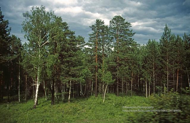 Transsib, Russia after Irkutsk