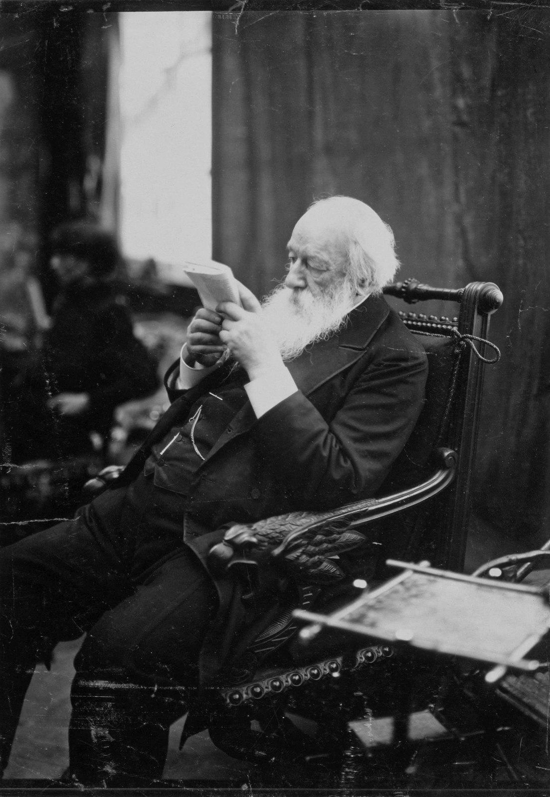 1890-е. Портрет Владимира Васильевича Стасова
