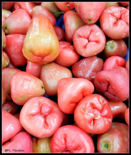 Rose Apple fruits
