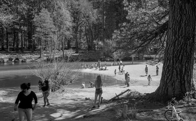 Americans en tableaux: Merced River, Yosemite.