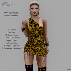 $50L NEW!!! *P* Tana Mesh Dress ~Golden Zebra~