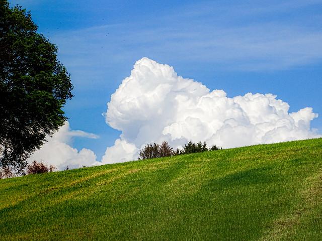 Wolken Wiese