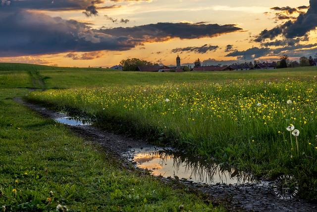 Nach dem Frühjahrsregen - After a spring rain - Weyarn