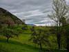 Baulmes derrière la colline