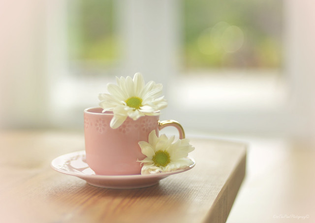 Cup of Spring...