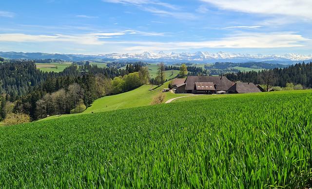 Emmental valley alpine landscape