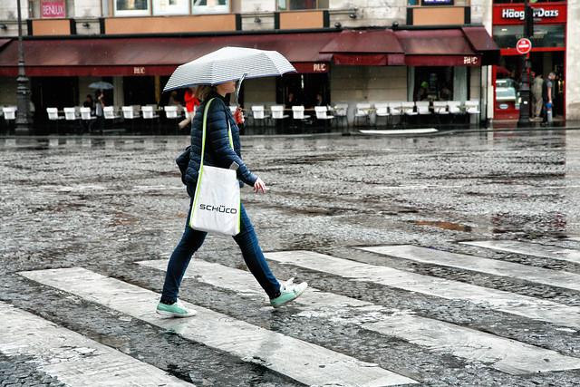 Jour de pluie // Rainy day