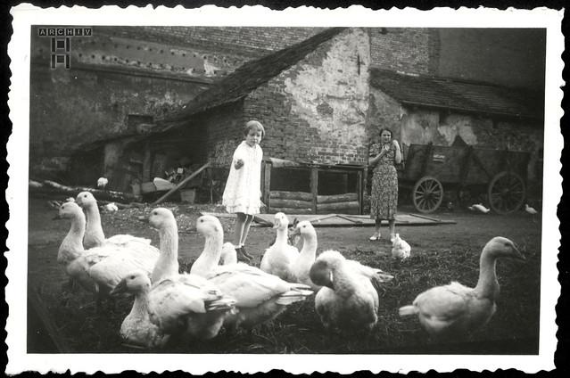 ArchivTappen233AAl3k792 Kindheit in Schlesien, 1930er