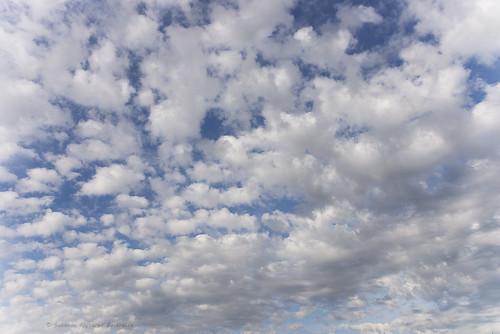 Nel mare del cielo (In the sea of heaven)