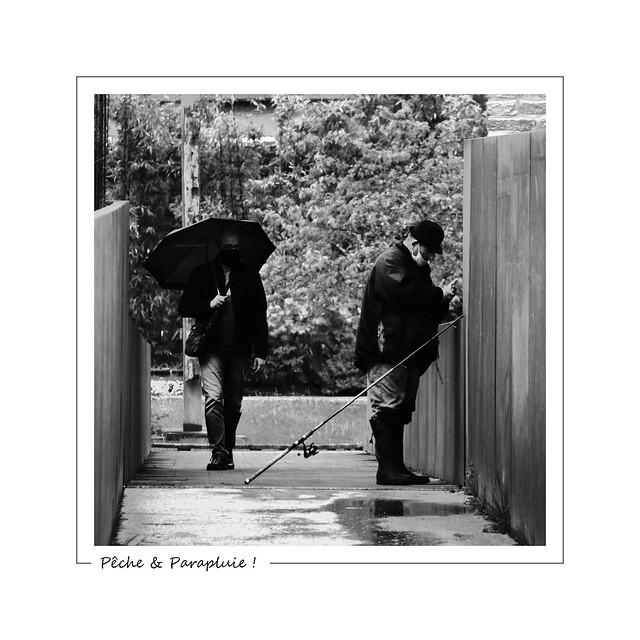Fishing rod and rain ! / Pêche et Parapluie !