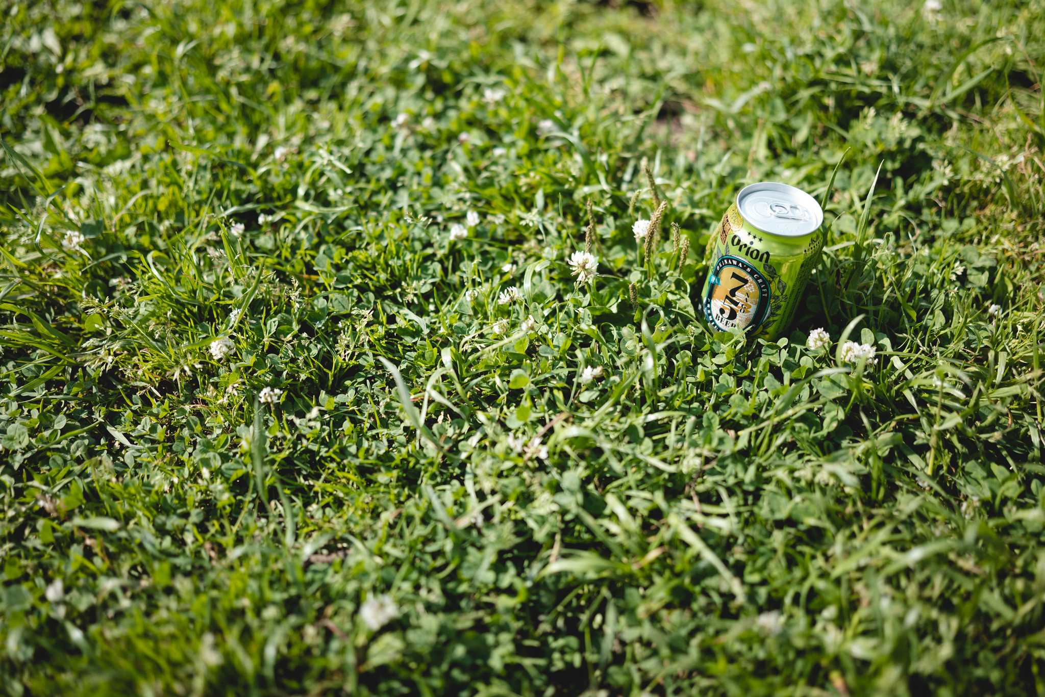 Beer harvest