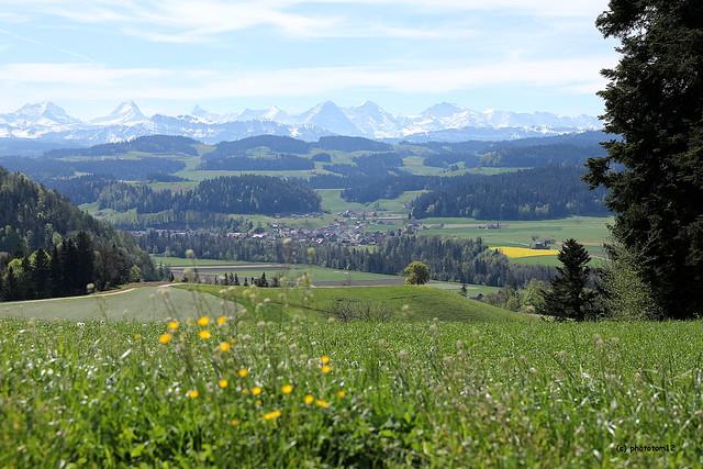 Berner Alpen am Frühlingstag