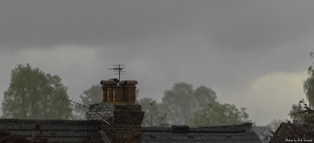 rain and rooftops