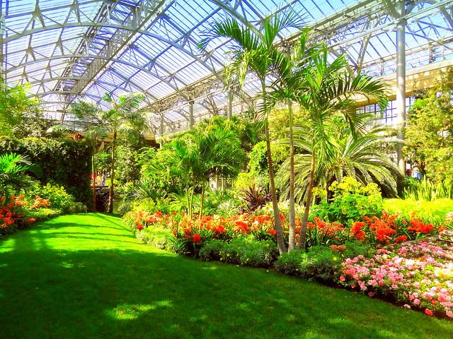 Conservatory. Green Hall