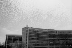 Unisys buildings, North Circular