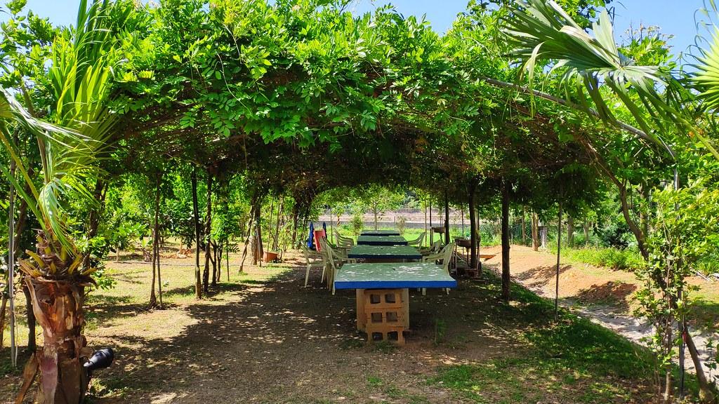 桃蘆坑農場