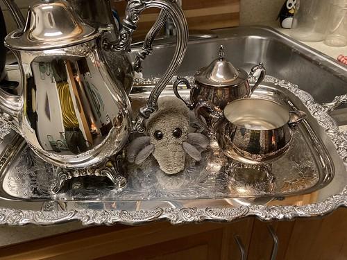 Family silver mite