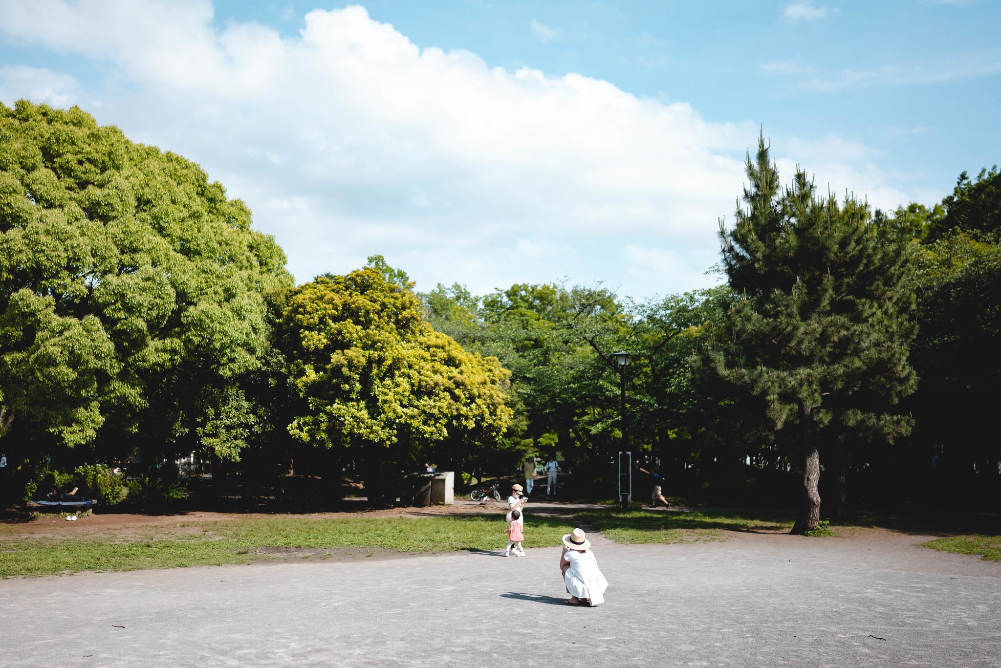 Park in sunny