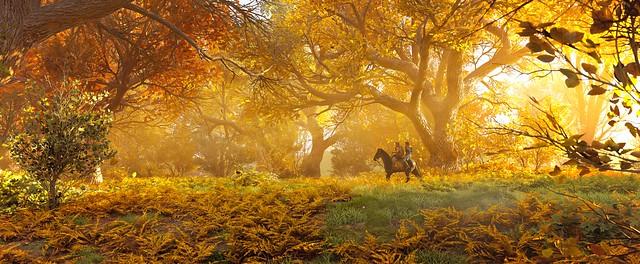 ''Autumn Ride''