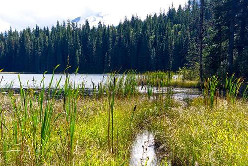 Cedar Lakes near Golden