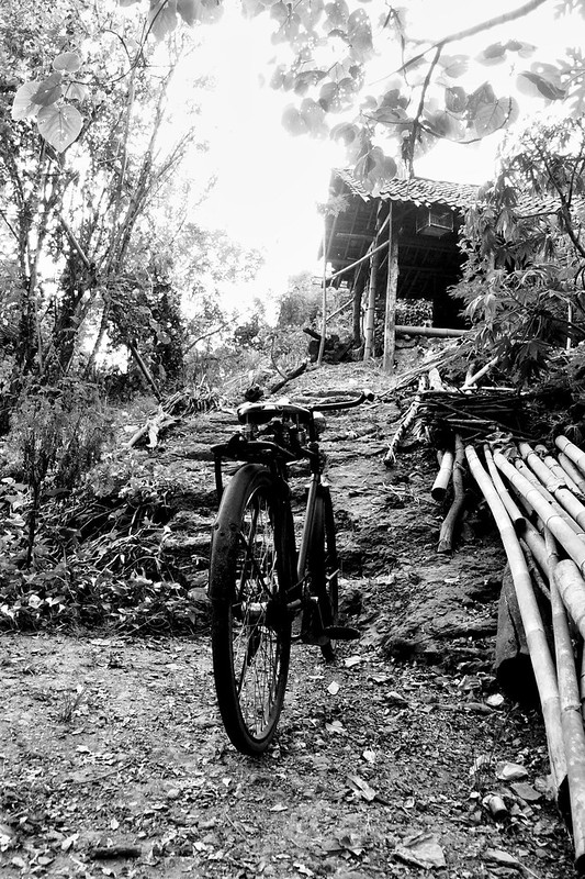 A cycle and a old shed