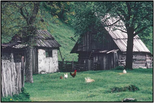 Keusche bei Trenta_1983_OM2