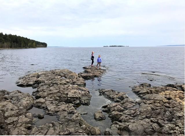 В Петрозаводской губе Онежского озера